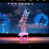 magnifique spectacle d'Acrobaties